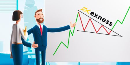 Exnessのプロフェッショナルアカウントの機能は何ですか?適切なアカウントの選び方(上級トレーダー)
